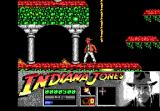 Indiana Jones and the Last Crusade: The Action Game DOS Level 2 - Oh rats...