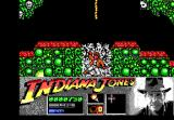 Indiana Jones and the Last Crusade: The Action Game DOS Level 2 - Indy falls into a pit full of bones.