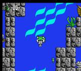 Hook NES Use this heavy object to quickly get to the sea bottom