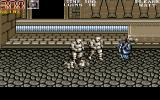 Double Dragon III: The Sacred Stones Amiga Still in the temple