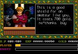 Ys: Book I & II TurboGrafx CD Whom are you calling amateur, you jerk?! I'm the protagonist of a groundbreaking action RPG!!