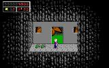 Commander Keen 4: Secret of the Oracle DOS Optional rooms with all sorts of collectibles and ammo abound (EGA)