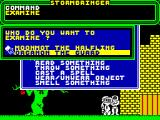 Stormbringer ZX Spectrum Hmm, what to do now?