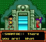 Shantae Game Boy Color An entrance to one of the sealed temples