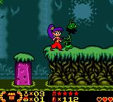 Shantae Game Boy Color Fighting a zombie