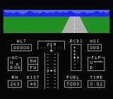 Flight Path 737 MSX On the runway