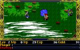 Ys II Special DOS Mysterious lake area