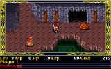 Ys II Special DOS In a cave. Tougher enemies