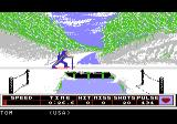Winter Games Atari 7800 Some cross country skiing...