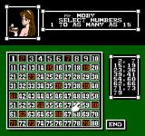 Vegas Dream NES Selecting the Keno numbers you want to play