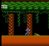 Strider NES Deep in the jungles of Africa
