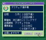 Power Golf 2: Golfer TurboGrafx CD Tournament info