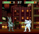 Mad Stalker: Full Metal Force TurboGrafx CD You can control enemies in the versus mode! Time for revenge!..