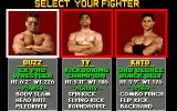 Pit-Fighter Amiga Choose your fighter.