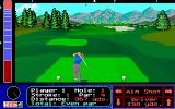 Jack Nicklaus' Unlimited Golf & Course Design DOS Tee shot  (MCGA/VGA)