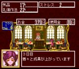 Princess Maker: Legend of Another World SNES Bo-oooring...