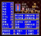 Princess Maker: Legend of Another World SNES The princess' stats