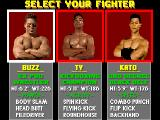 Pit-Fighter DOS Choose your fighter