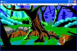 Space Quest 0: Replicated Windows You emerge from the water to find that...you're in a jungle.