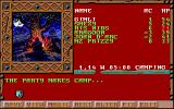 Treasures of the Savage Frontier Amiga The party makes camp.
