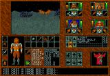 Abandoned Places: A Time for Heroes Amiga In the night fighting with bats.