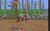 Golden Axe DOS Fighting