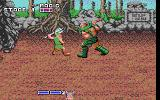 Golden Axe DOS Fighting with BOSS (EGA)