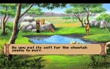 Quest for Glory III: Wages of War DOS This pool is so magical that even cheetahs will let you pet them and gazelles won't be scared of them