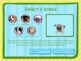 Dogz Windows These are the five breeds available for adoption. Each has its own characteristics and problems such as long hair and slobbering.