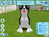 Dogz Windows Back in the yard. Mobydog's photo won $17. Winning shows and performing tricks are how the player generates cash to feed their pet and upgrade the house.