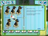 Dogz Windows In the inventory is a book of basic tricks. teaching and performing these generates cash. More advanced books of tricks can be bought from the pet store.