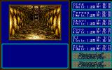 Record of Lodoss War II: Goshiki no Maryū PC-98 Dungeon navigation. Ladder ahead