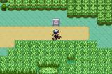Pokémon Ruby Version Game Boy Advance New tall grass ... you disappear from sight (mostly) in this grass