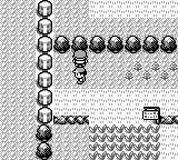 Pokémon Red Version Game Boy Can't go that way neither.