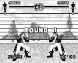 Fighters Megamix Game.Com Mirror Match