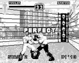 Fighters Megamix Game.Com Perfect Victory