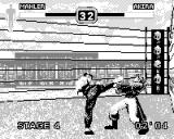 Fighters Megamix Game.Com Akira kick to the face