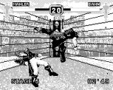 Fighters Megamix Game.Com Jump kick