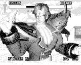 Fighters Megamix Game.Com Victory screen fro Mahler after beating stage six.