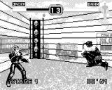 Fighters Megamix Game.Com Jacky in his cool leather jacket