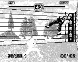 Fighters Megamix Game.Com Before a special move characters turn white with beams coming out of them.