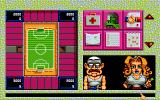 Club & Country Amiga The stadium view