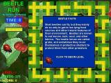 Beetle Run Windows 3.x .... the game displays a beetle fact at the start of the level.