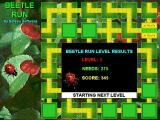 Beetle Run Windows 3.x The end of a successful level. This is followed by another beetle fact and the start of another level