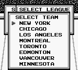 Blades of Steel Game Boy Select team
