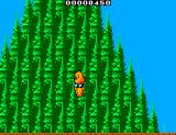 The New Zealand Story SEGA Master System Tiki comes from the forest pictured here