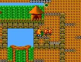 The New Zealand Story SEGA Master System Level 2-3