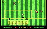 Keith Van Eron's Pro Soccer DOS Replay - Goal Shot (Outdoor) (CGA)