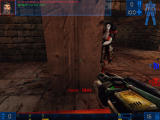 Unreal Tournament Windows Shoot in the wall