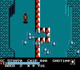 The Guardian Legend NES Infinitely multiplying spiders, better avoid fighting these